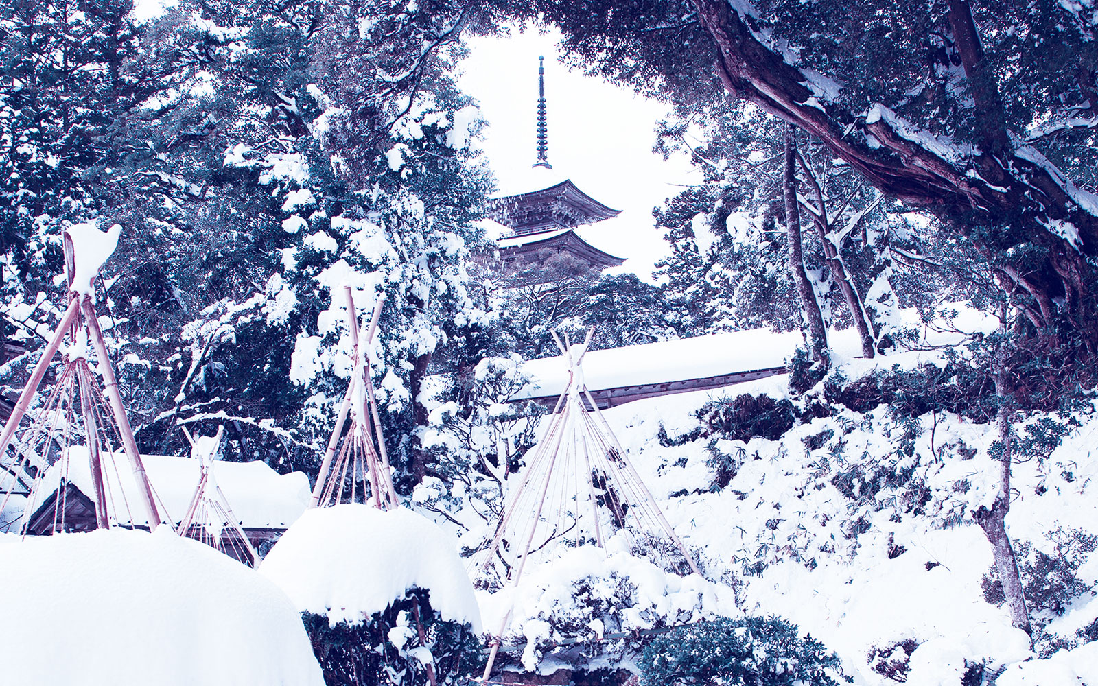 A splendid tower covered in snow